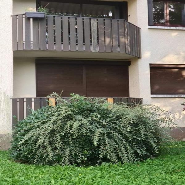 Offres de location Appartement Eybens 38320